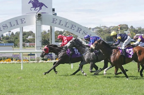 Ellerslie Race Course